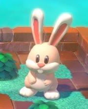 SMM2 Rabbit